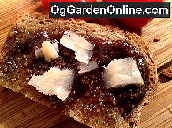 Backen Herb Brot