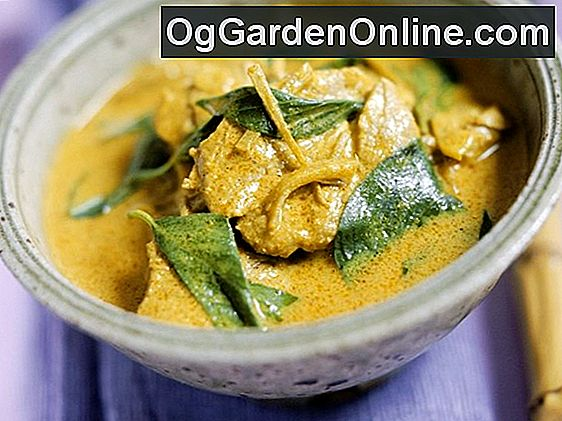 Thai Basilikum Curry
