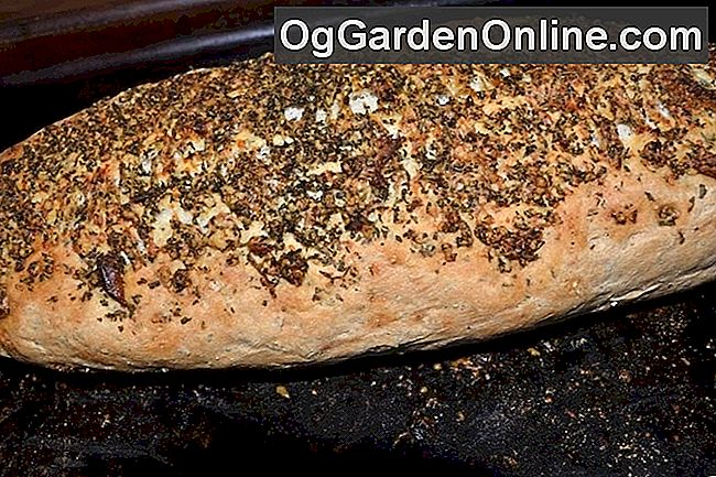 Backen Herb Brot: herb