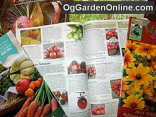 Januar ist... National Mail Order Gardening Monat: mail